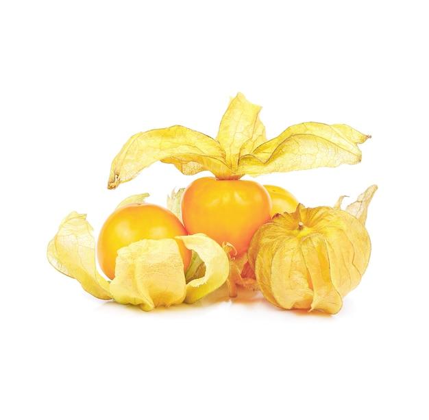 ケープグーズベリー、白で分離されたサイサリス