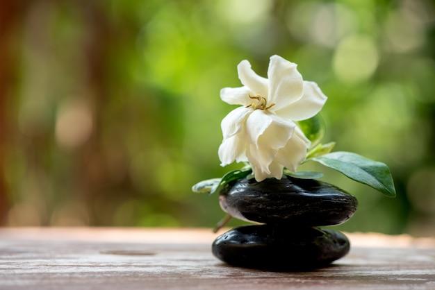自然の上のケープジャスミンの花。