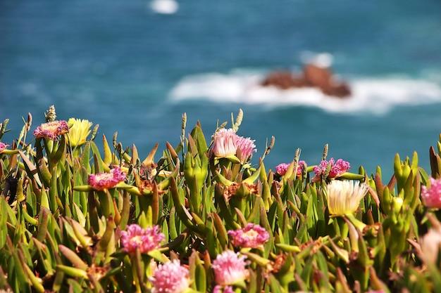 ポルトガル、大西洋のロカ岬