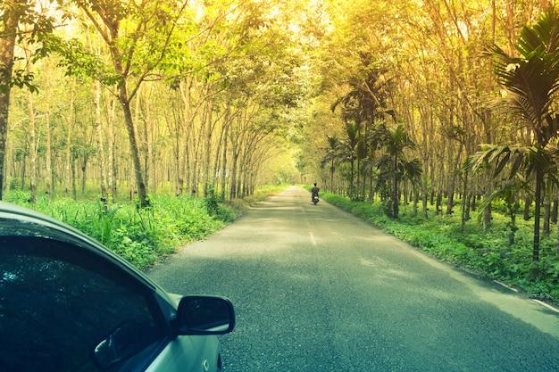 アジアの緑色のゴム農園での車とオートバイの旅