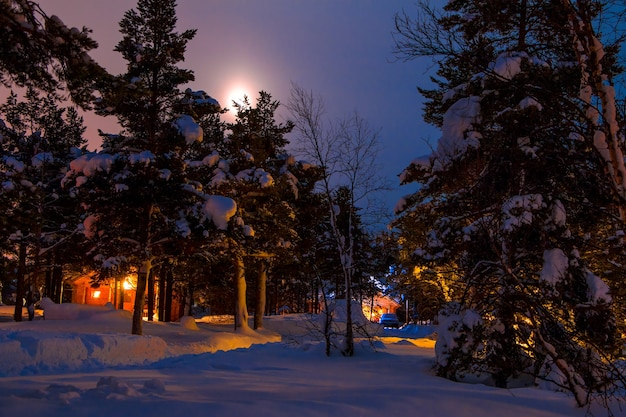 冬の森でのカーキャンプ。雪がたくさん。夜のイルミネーションと霧の空の月
