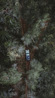 Car driving along a pathway in a forest