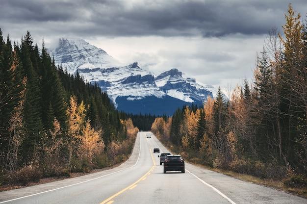 秋の森のロッキー山脈と高速道路を運転する車