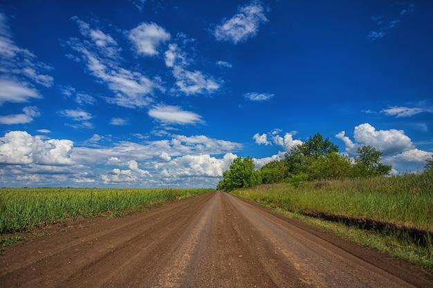 フィールドに沿って白い雲と地平線上の木々と青い空を背景に、晴れた夏の春の日に遠く離れた、自動車のない、空の田舎の道
