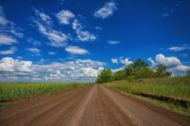 Car-free, empty rural countryside road, on a sunny summer, spring day, receding into the distance, against a blue sky with white clouds and trees on the horizon, along the field