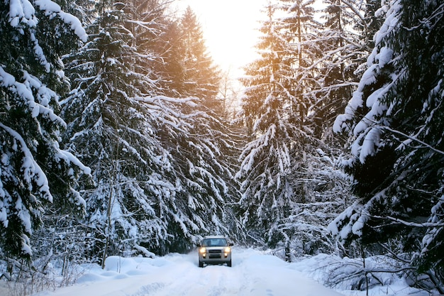 겨울에 자동차입니다. 도시 밖의 강설량