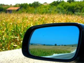 Car mirror and cornfield