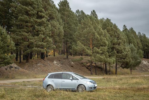 조용한 침엽수림 옆에 있는 자동차. 여행, 아름다운 자연, 가을 분위기의 개념.