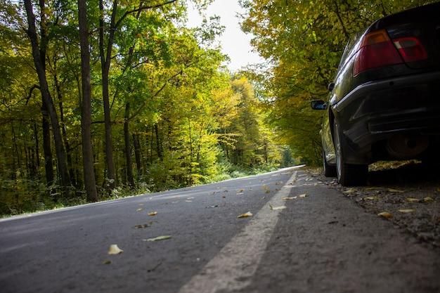Автомобиль на обочине дороги у лесной дороги. размытый фон.