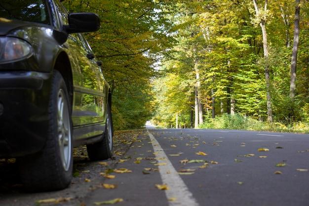 林道近くの道端の車。背景がぼやけている。