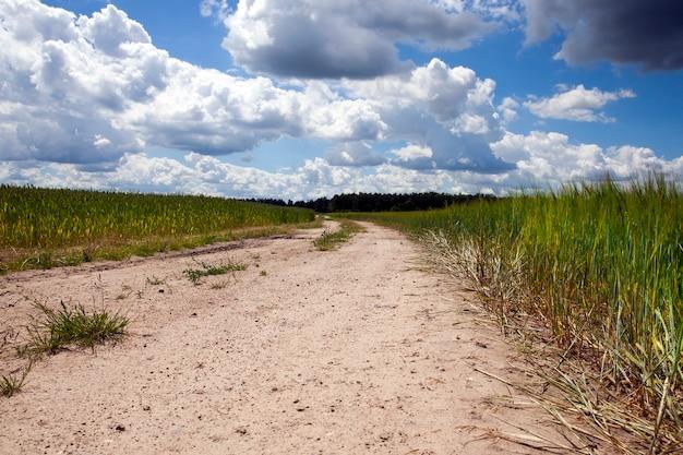 Автомобильная дорога в поле без асфальта, крупный план