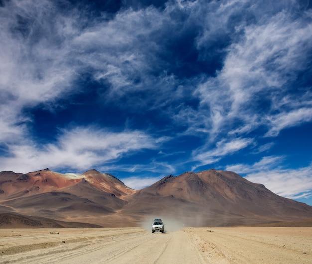 ボリビアの太陽の光の風景の中の乗馬