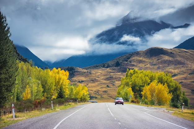 A car running on road in arthurs pass, new zealand with colorful trees in autumn.