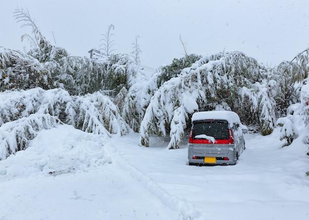 A car under the snow