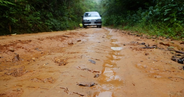A car stuck in the slippery dirt road while it was raining in the forest.