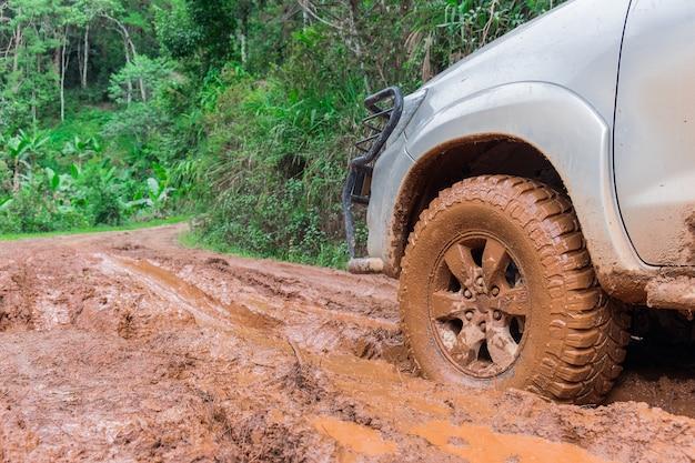 숲에서 나무의 트렁크와 비포장 도로에 자동차 타이어.