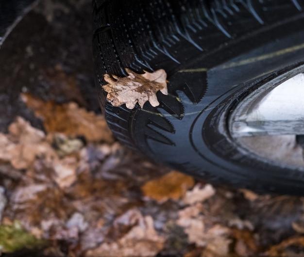 車の車輪の輸送と安全性の概念の秋のクローズアップでカエデの葉を持つ車のタイヤ