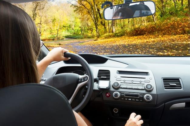 国の秋の道路と車のフロントガラス