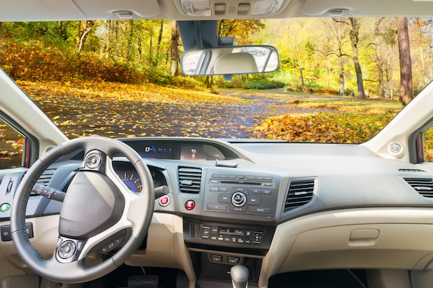 Car windscreen with country fall road