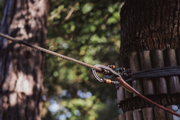 Carabiner and rope from the safety systems in the adventure park