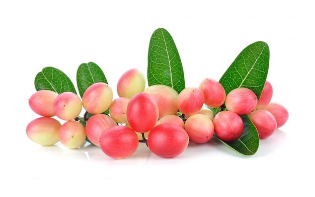 カリッサcarandasリン、karanda、carunda、白で隔離される葉を持つ