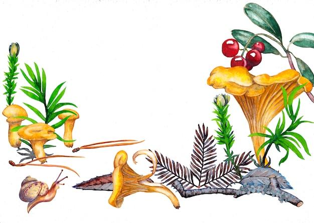 アンズタケきのこ、苔、草、葉、背骨、カウベリーとカタツムリの小枝のカード。水彩画。