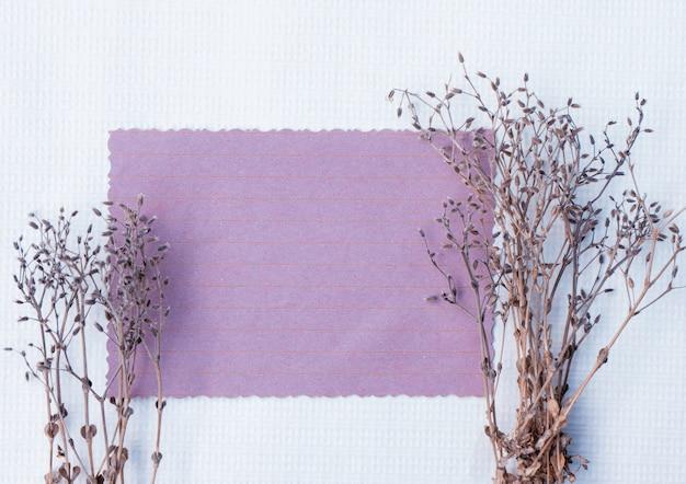 Карточка с полевыми сухими растениями с копией пространства для дизайна
