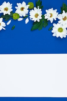 Card with white flowers and green leavs for birthday, mother's day or wedding. blue paper background.