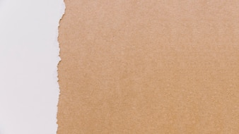 Cardboard and paper texture