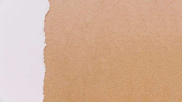 段ボールと紙の質感
