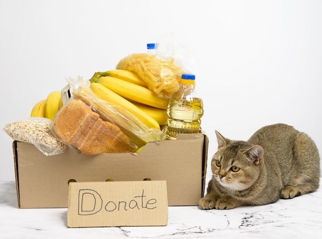 ペットボトルに入ったさまざまな製品、果物、パスタ、ひまわり油と保存が入った段ボール箱。寄付のコンセプト