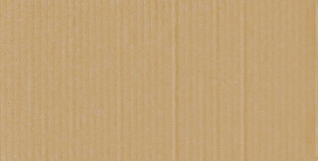 Cardboard paper texture of box or wall in background.