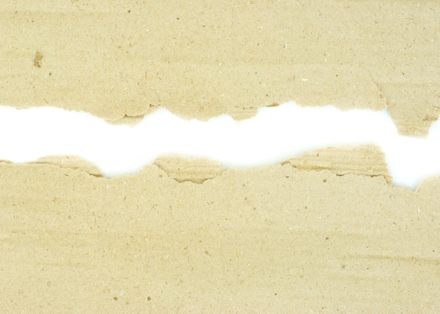 격리 된 흰 바탕에 골 판지 조각