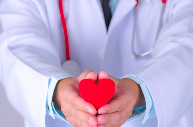 Cardiologist doctor holding red heart in hospital workplace.