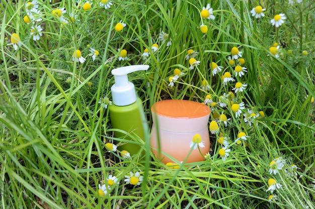 Травяной уход с ромашкой, макет травы органического стиля на зеленой траве, на открытом воздухе