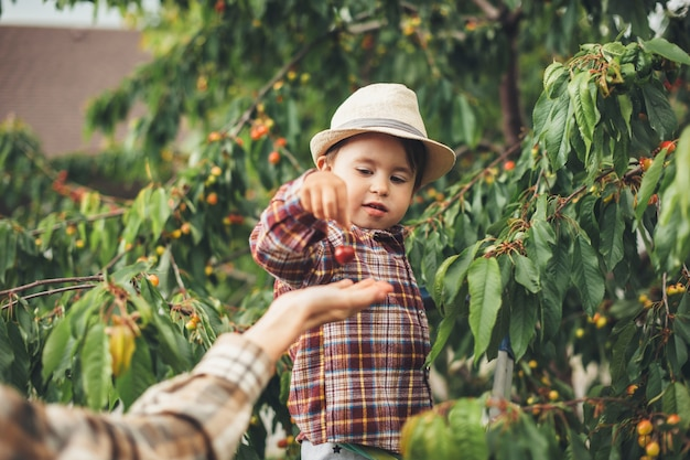 Careful caucasian boy wearing a hat is giving cherries to his mother standing near the tree