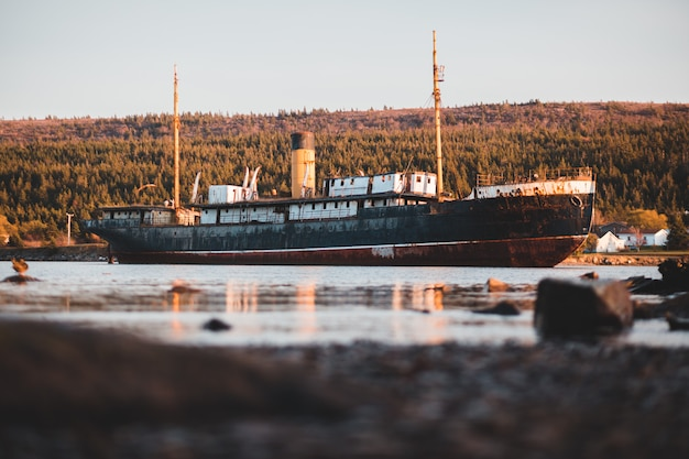 Cargo ship with forest behind