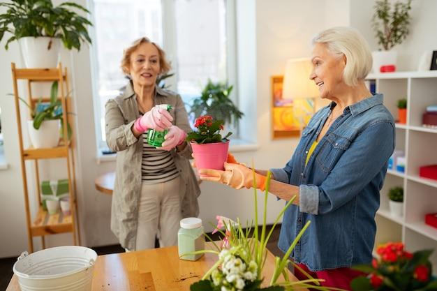 植物の世話。花の水やりに使用しながら水スプレーを保持しているポジティブな高齢女性