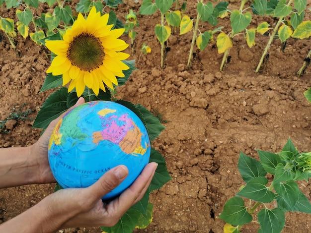 地球の世話地球の自然生態系植物を手に取る手