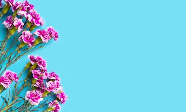 青い表面にカーネーションの花
