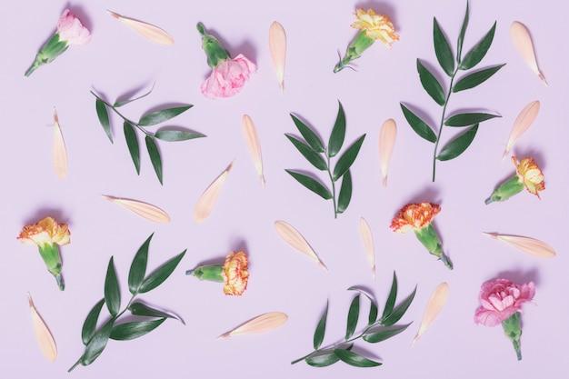 꽃잎과 잎 근처의 카네이션 헤드