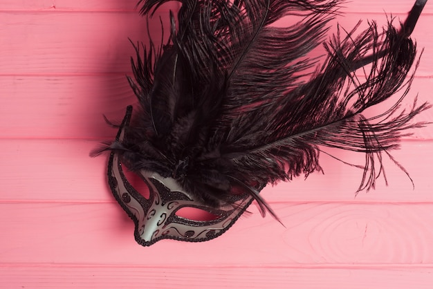 Carnival mask with black feathers