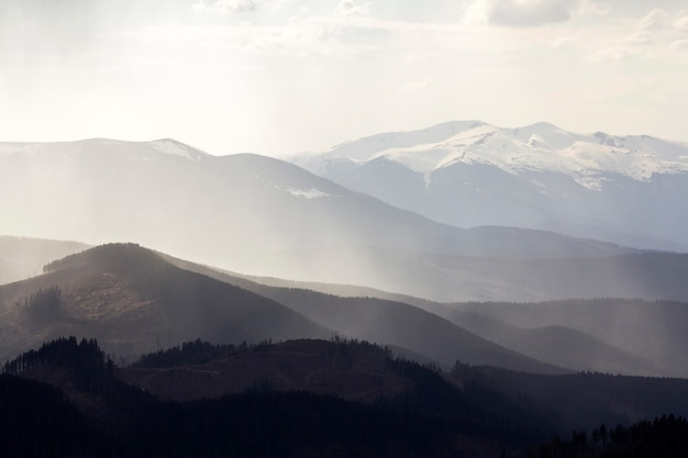 Carpathian mountains, covered with ever-green forest.