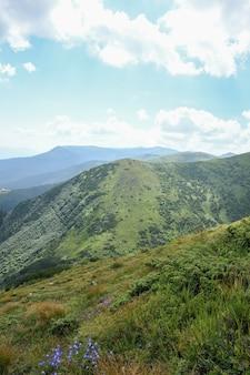 대로 산, 녹색 및 꽃이 만발한 산 정상