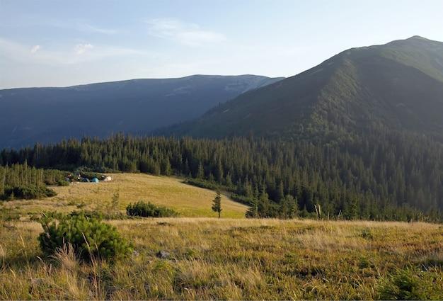 Карпатский горный пейзаж с желтой травой на переднем плане и туристическими палатками позади