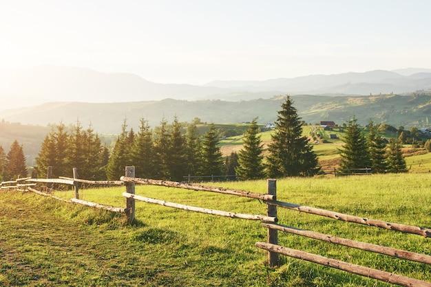 カルパティア山脈。写真はカルパティア山脈で高く撮影されました。美しい空と明るい緑の草は、カルパチア山脈の雰囲気を伝えます。カルパティア山脈では、非常に美しい景色