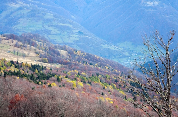 카르파티아 산맥(우크라이나) 가을 풍경