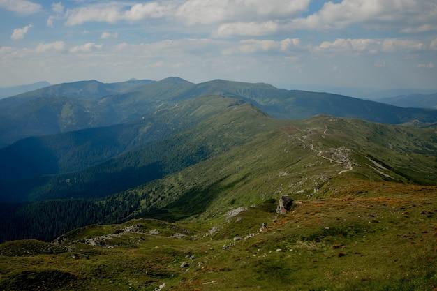 여름 아침에 carpathians 산맥입니다. 야생 처녀 우크라이나 자연의 아름다움입니다. 평화로움.