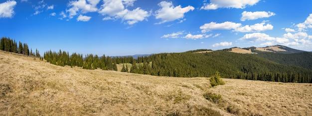 カルパティア山脈の夏の風景、広いパノラマ