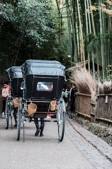 Carriage in arashiyama bamboo grove, travelers sightseeing in sagano bamboo forest. landmark and popular for tourists attractions in kyoto, japan. asia travel concept